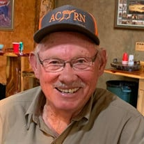 Larry L. Murphy