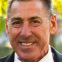 David Scavia