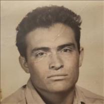 Felipe Escamilla Del Villar