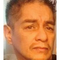 Mr. Thomas Acevedo (Tom)