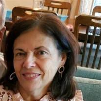Denise C Hamilton