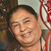 Ma. Guadalupe Garcia Arellano