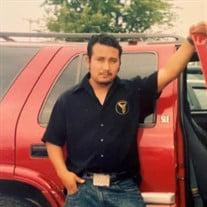 Mr. Berceli Lopez Hernandez