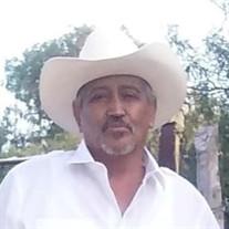 Nicolas Silva Castaneda