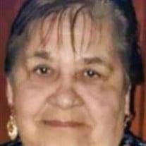 Lidia Morin De Garza