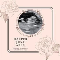 Harper June Abla