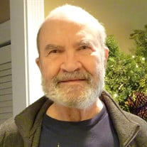 Theodore Stohr Jr