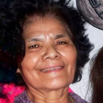 Maria C. Vazquez Hernandez