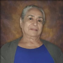 Maria Estrada Angulo