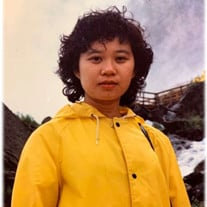Shi-Di Cheng
