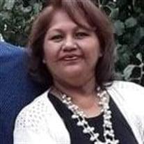 Guadalupe Segura Gomez