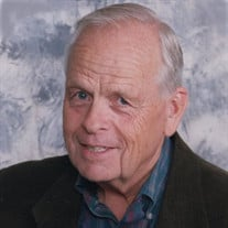 Woody Merchant