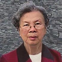 Xinh Phung Tang