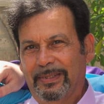 Dennis J. Boccadoro