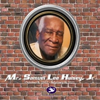 Mr. Samuel Lee Hulsey Jr.