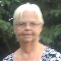 Sally Ann Jenney