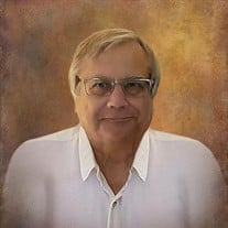 Dr. Harry Louis Salvo Jr.