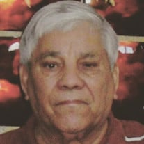 Arnoldo De Leon Alaniz Sr.
