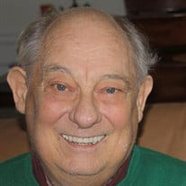 Robert J Brinkmann
