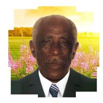 Mr. Carl Robert Greene