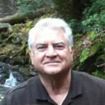 Terry A. Malone