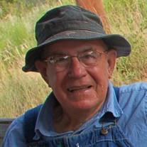 Burnis Lee Stokes Sr.