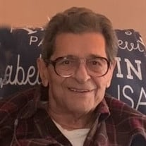 Vincent F. Cannistraci