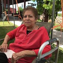 Guadalupe V. Licon