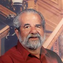 Ronald J Lagattuta