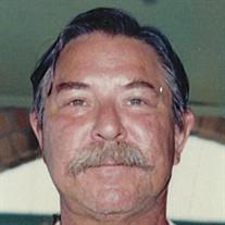 Vernon Nelson Stokes