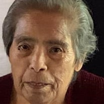 Ramona Yolanda Serna