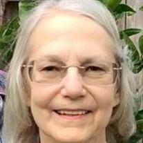 Cheryl Diane (Cawvey) Springer