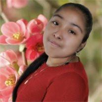 Areli Salazar Tellez