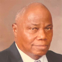 Mr. Alric A. Johnson Jr.
