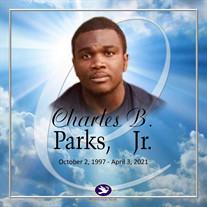Mr. Charles Parks Jr.