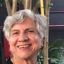 Toni Gallo