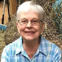 Nancy A. Baseflug