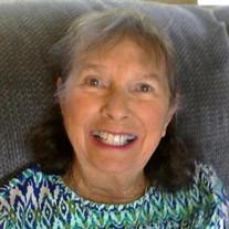 Lois Ann Wipson
