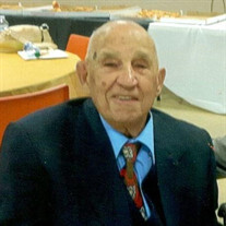 Mr. Michael Mosceo