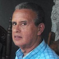 Luis Fuertes