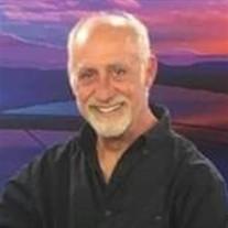 Mark L Wilcox