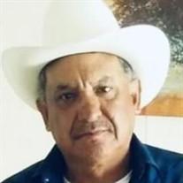 Luz Albert Hinojosa Garcia
