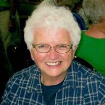 Joanne Elaine (Schlueter)  Meinert