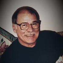 Dennis M Plesha