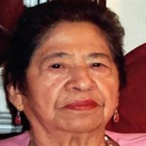 Catalina Perdomo Saravia