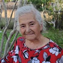 Yolanda P. Silva