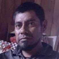 Mr. Tomas Morales Hernandez