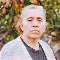 Elizabeth Del Cid De Campos