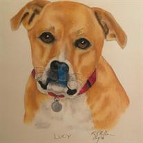 Lucy Lovett-Bickley