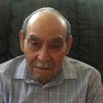 Domingo P. Villarreal